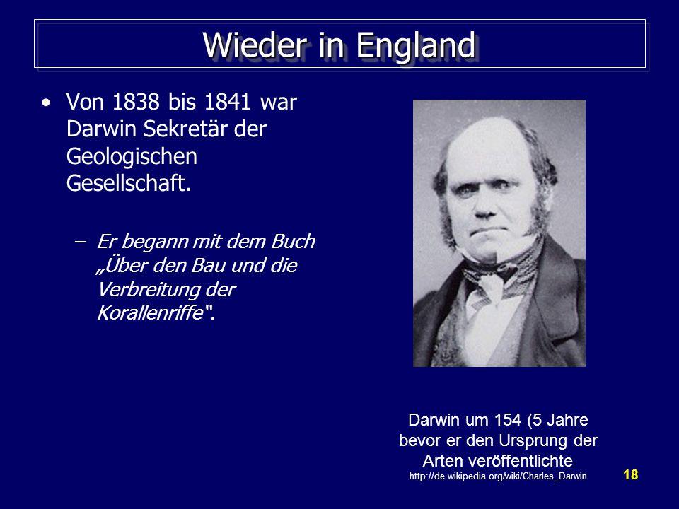 18 Wieder in England Von 1838 bis 1841 war Darwin Sekretär der Geologischen Gesellschaft.