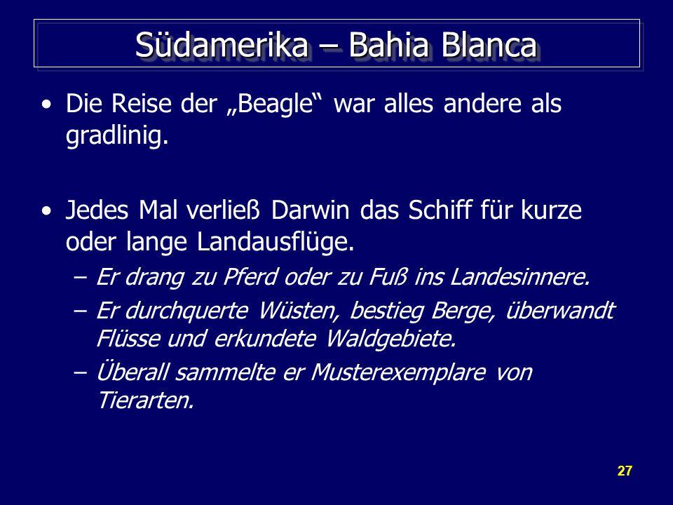 """27 Südamerika – Bahia Blanca Die Reise der """"Beagle war alles andere als gradlinig."""