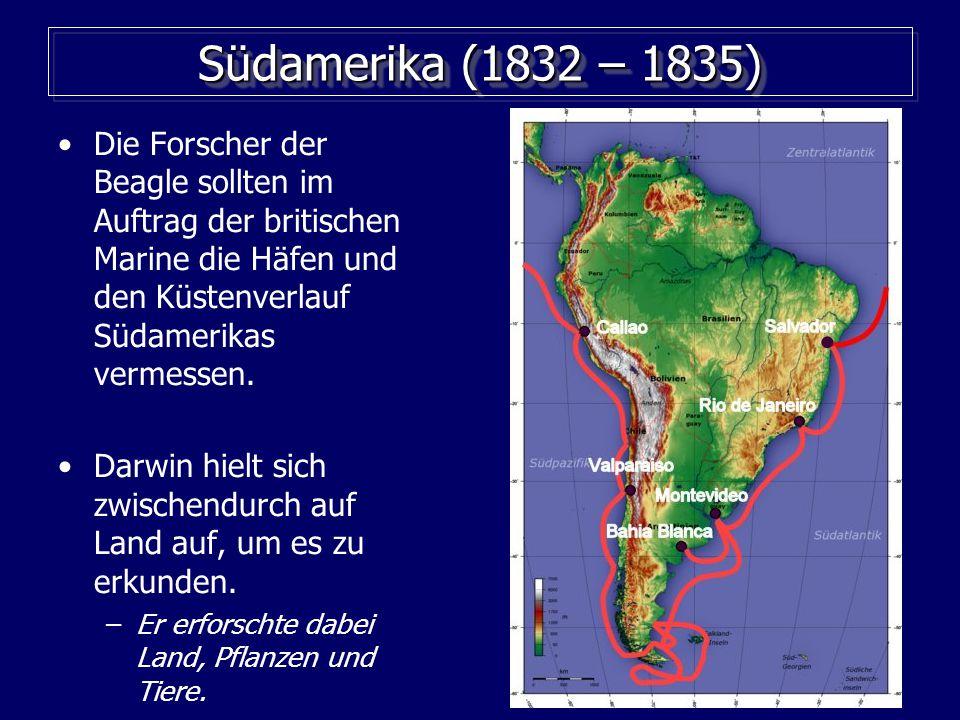 28 Südamerika (1832 – 1835) Die Forscher der Beagle sollten im Auftrag der britischen Marine die Häfen und den Küstenverlauf Südamerikas vermessen.