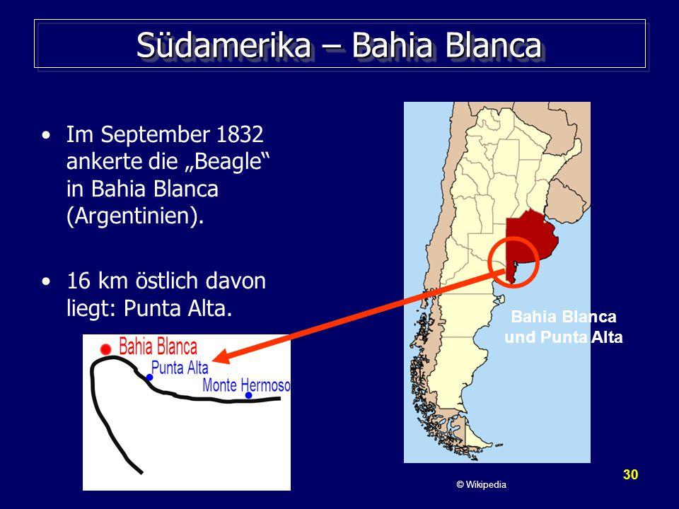 """30 Südamerika – Bahia Blanca Im September 1832 ankerte die """"Beagle in Bahia Blanca (Argentinien)."""