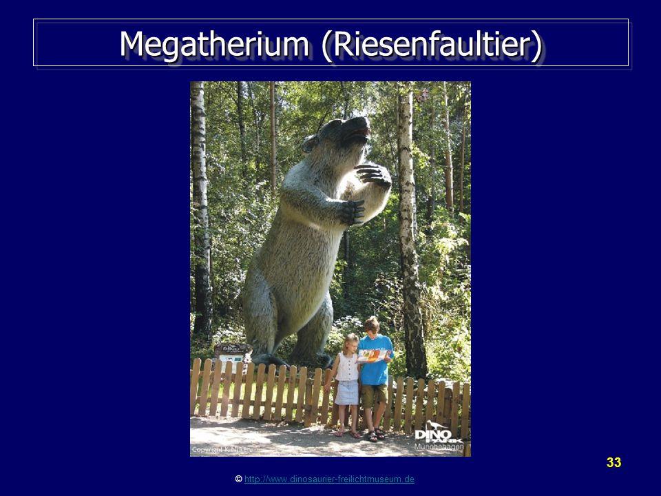 33 Megatherium (Riesenfaultier) © http://www.dinosaurier-freilichtmuseum.dehttp://www.dinosaurier-freilichtmuseum.de
