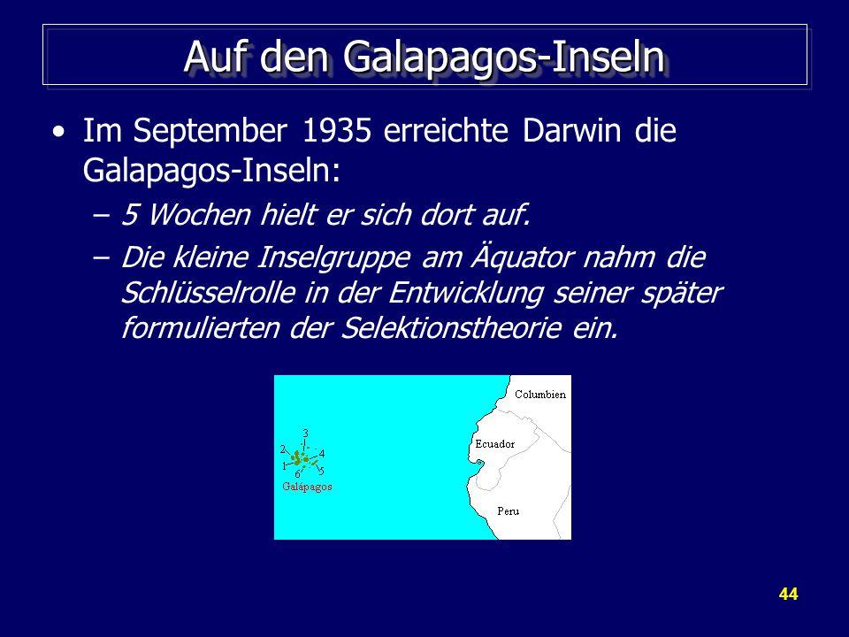 44 Auf den Galapagos-Inseln Im September 1935 erreichte Darwin die Galapagos-Inseln: –5 Wochen hielt er sich dort auf.
