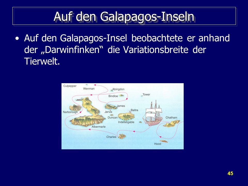 """45 Auf den Galapagos-Inseln Auf den Galapagos-Insel beobachtete er anhand der """"Darwinfinken die Variationsbreite der Tierwelt."""