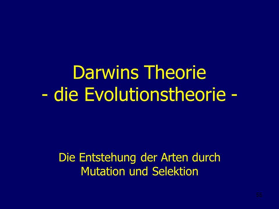 55 Darwins Theorie - die Evolutionstheorie - Die Entstehung der Arten durch Mutation und Selektion