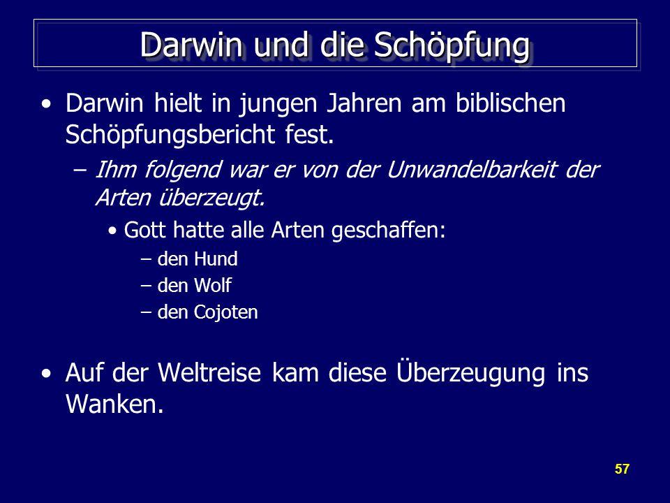 57 Darwin und die Schöpfung Darwin hielt in jungen Jahren am biblischen Schöpfungsbericht fest.