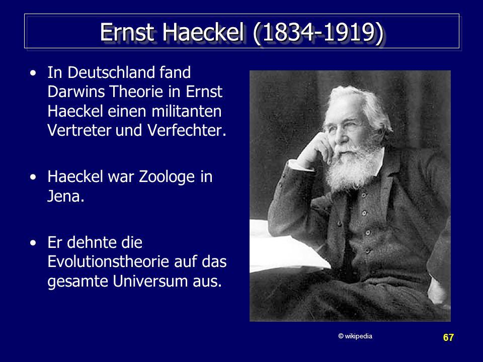 67 Ernst Haeckel (1834-1919) In Deutschland fand Darwins Theorie in Ernst Haeckel einen militanten Vertreter und Verfechter.