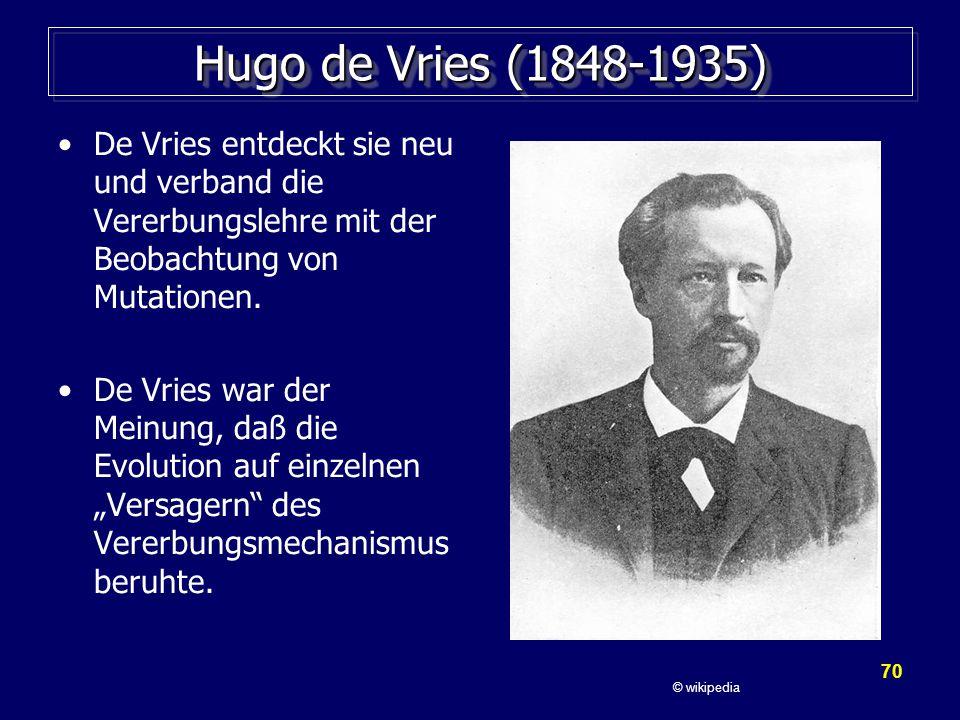 70 Hugo de Vries (1848-1935) De Vries entdeckt sie neu und verband die Vererbungslehre mit der Beobachtung von Mutationen.