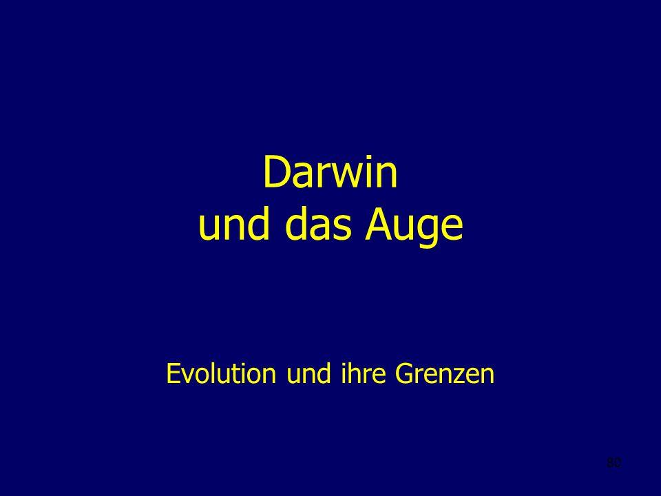 80 Darwin und das Auge Evolution und ihre Grenzen
