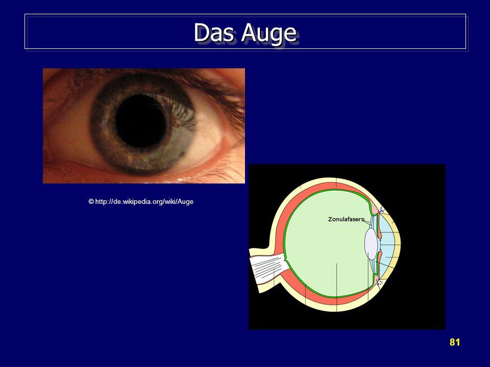 81 Das Auge © http://de.wikipedia.org/wiki/Auge
