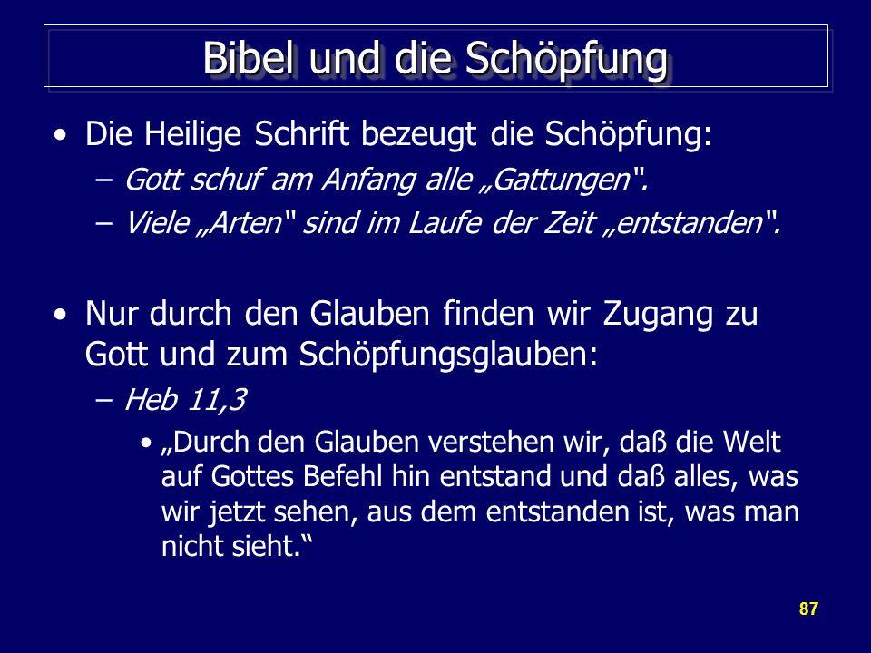 """87 Bibel und die Schöpfung Die Heilige Schrift bezeugt die Schöpfung: –Gott schuf am Anfang alle """"Gattungen ."""