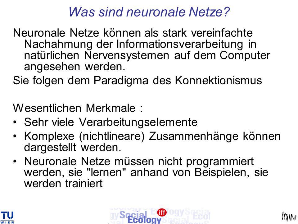 Was sind neuronale Netze? Neuronale Netze können als stark vereinfachte Nachahmung der Informationsverarbeitung in natürlichen Nervensystemen auf dem