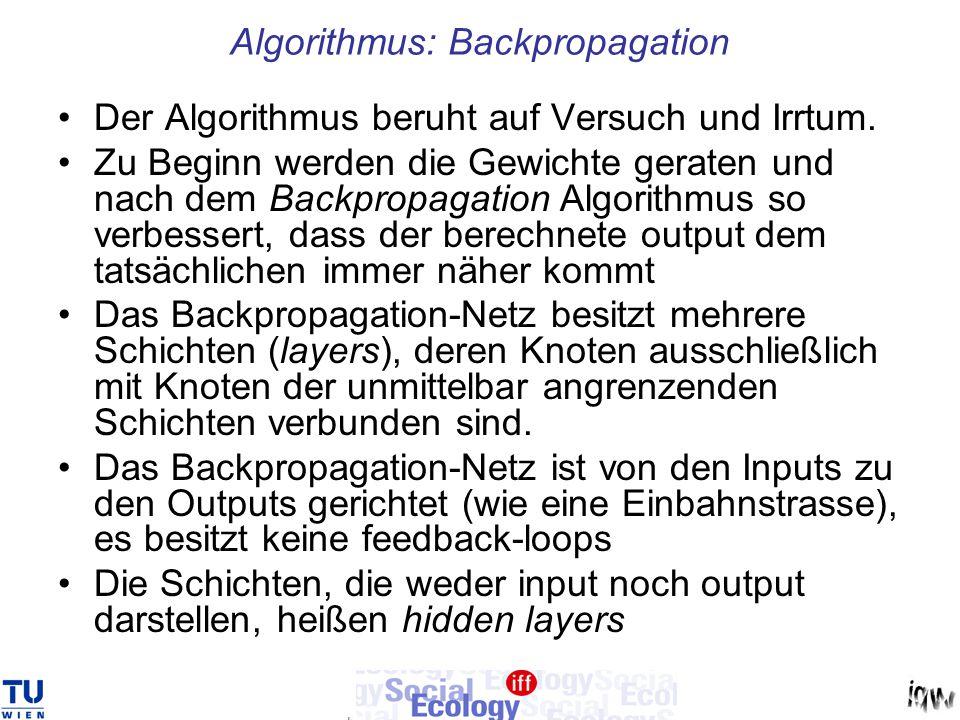 Algorithmus: Backpropagation Der Algorithmus beruht auf Versuch und Irrtum. Zu Beginn werden die Gewichte geraten und nach dem Backpropagation Algorit