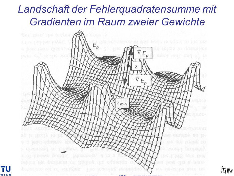 Landschaft der Fehlerquadratensumme mit Gradienten im Raum zweier Gewichte