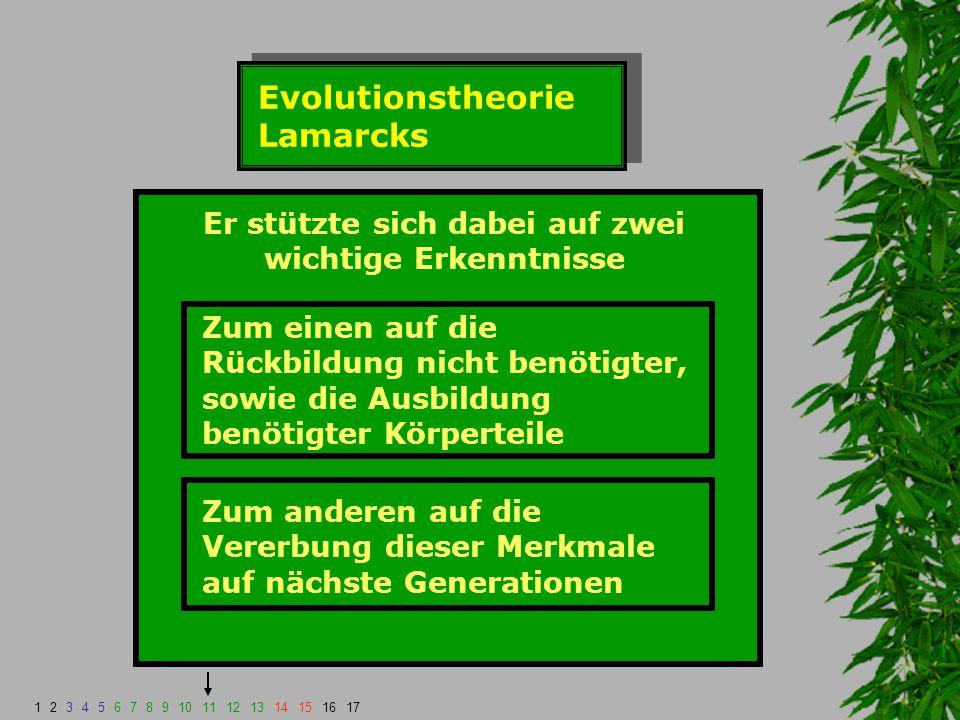 Evolutionstheorie Lamarcks Er stützte sich dabei auf zwei wichtige Erkenntnisse Zum einen auf die Rückbildung nicht benötigter, sowie die Ausbildung b