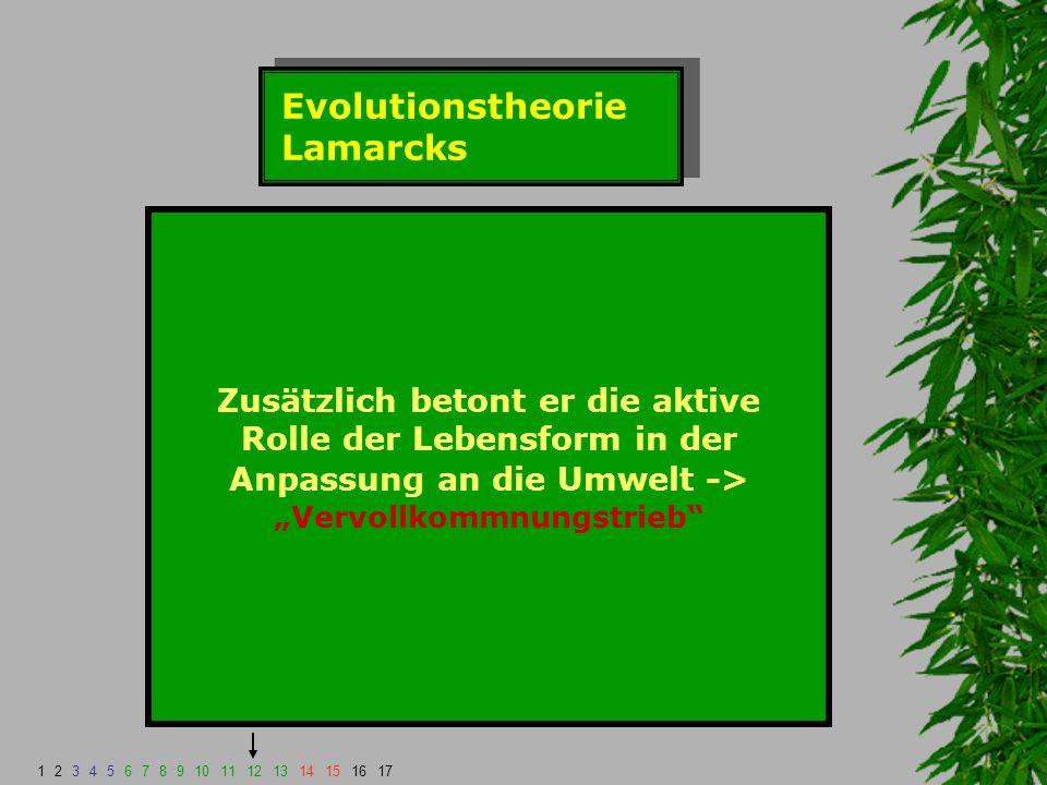 """Evolutionstheorie Lamarcks Zusätzlich betont er die aktive Rolle der Lebensform in der Anpassung an die Umwelt -> """"Vervollkommnungstrieb"""" 123456789101"""