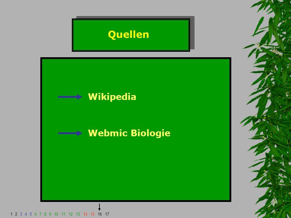 Quellen Wikipedia Webmic Biologie 1234567891011121314151617