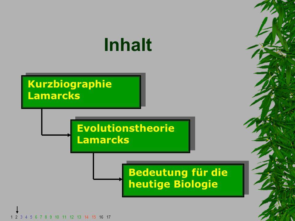 Evolutionstheorie Lamarcks Zusammengefasst ergibt sich folgendes Schema: Umwelt - Gegebenheiten Gebrauch; kein Gebrauch Weitergabe an Nachkommen Ausbildung; Verkümmerung 1234567891011121314151617