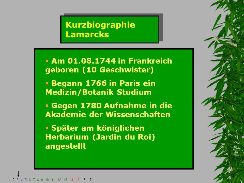 Kurzbiographie Lamarcks  Plädierte 1789 bei der Nationalversammlung für ein Museum der Naturgeschichte  Er wurde nach einiger Zeit Kurator für wirbellose Tiere (zuvor Botaniker)  Infolgedessen stellte er viele Theorien bezüglich der Evolution und Genese auf  Wurde Außenseiter und starb mittellos am 28.12.1829 1234567891011121314151617