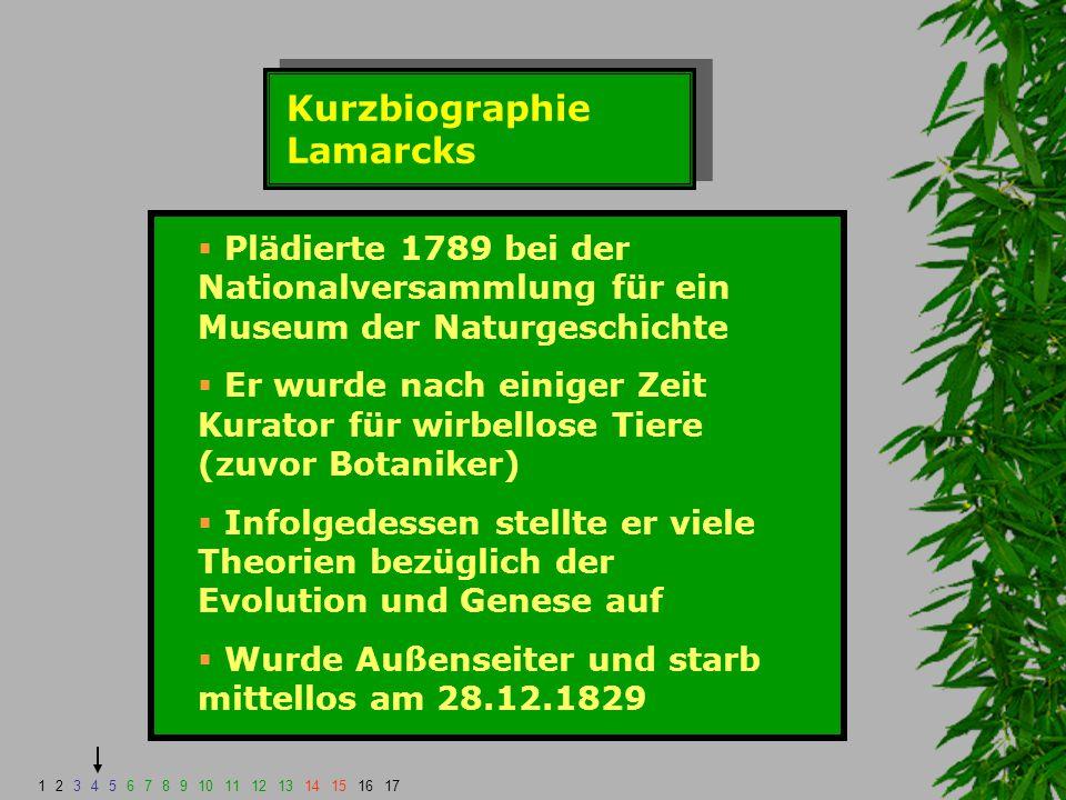 Kurzbiographie Lamarcks  Plädierte 1789 bei der Nationalversammlung für ein Museum der Naturgeschichte  Er wurde nach einiger Zeit Kurator für wirbe