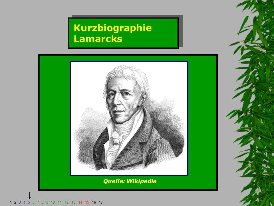 Kurzbiographie Lamarcks Quelle: Wikipedia 1234567891011121314151617