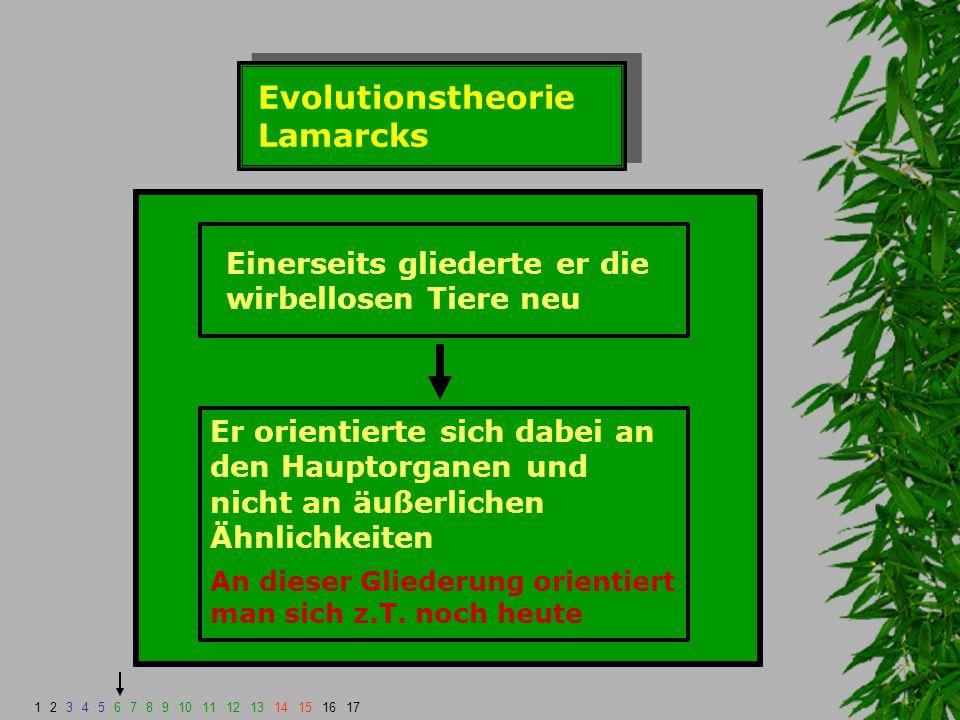 Evolutionstheorie Lamarcks Einerseits gliederte er die wirbellosen Tiere neu Er orientierte sich dabei an den Hauptorganen und nicht an äußerlichen Äh