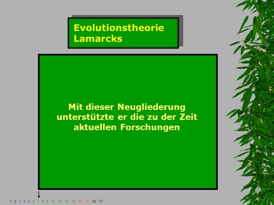 Evolutionstheorie Lamarcks Mit dieser Neugliederung unterstützte er die zu der Zeit aktuellen Forschungen 1234567891011121314151617