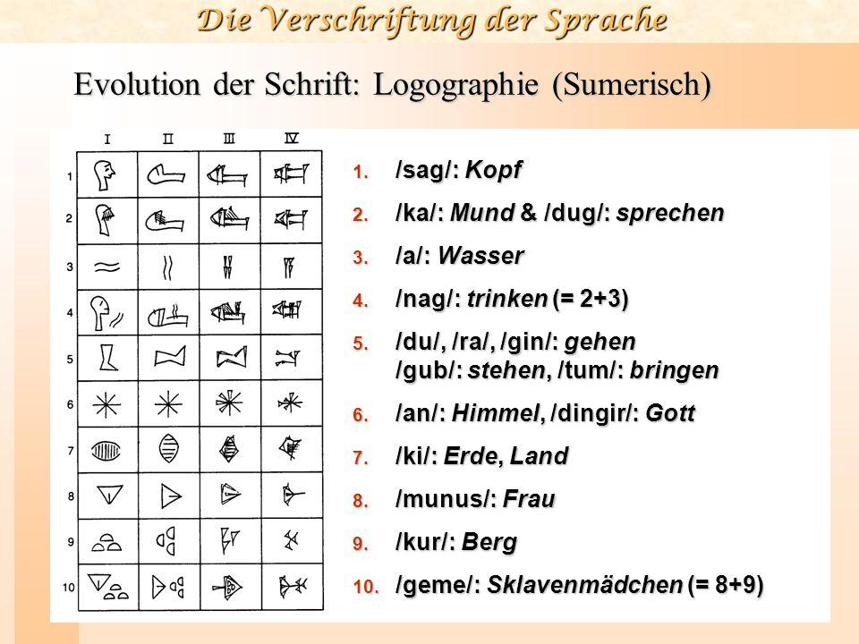 Die Verschriftung der Sprache Evolution der Schrift: Logographie (Sumerisch) 1. /sag/: Kopf 2. /ka/: Mund & /dug/: sprechen 3. /a/: Wasser 4. /nag/: t