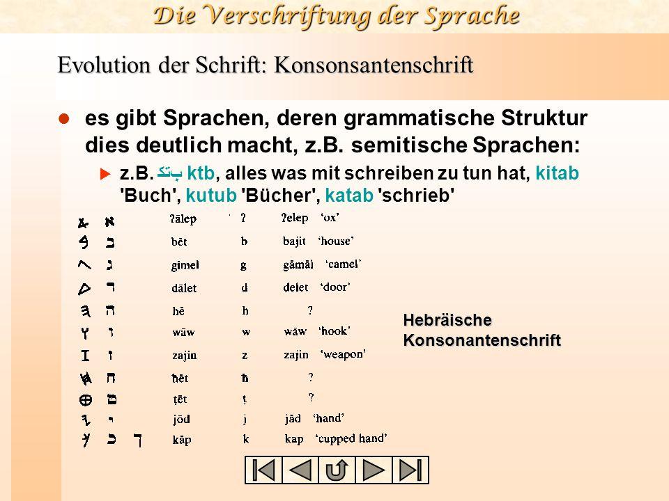Die Verschriftung der Sprache Evolution der Schrift: Konsonsantenschrift es gibt Sprachen, deren grammatische Struktur dies deutlich macht, z.B. semit