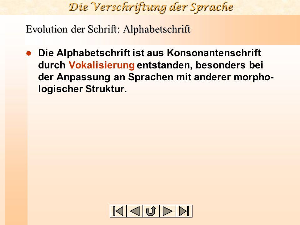Die Verschriftung der Sprache Evolution der Schrift: Alphabetschrift Die Alphabetschrift ist aus Konsonantenschrift durch Vokalisierung entstanden, be