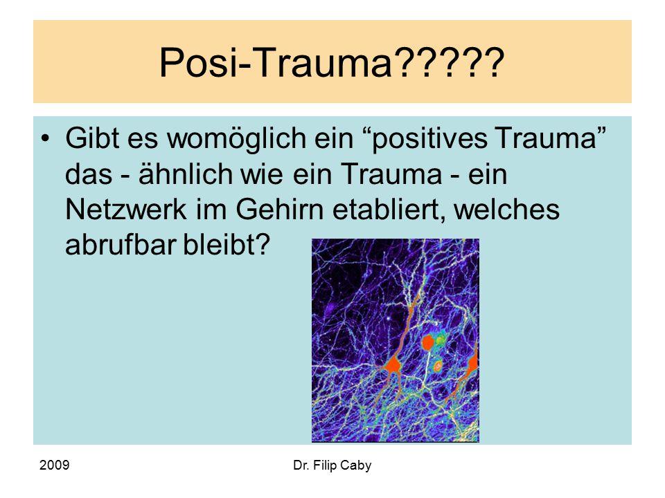 """2009Dr. Filip Caby Posi-Trauma????? Gibt es womöglich ein """"positives Trauma"""" das - ähnlich wie ein Trauma - ein Netzwerk im Gehirn etabliert, welches"""