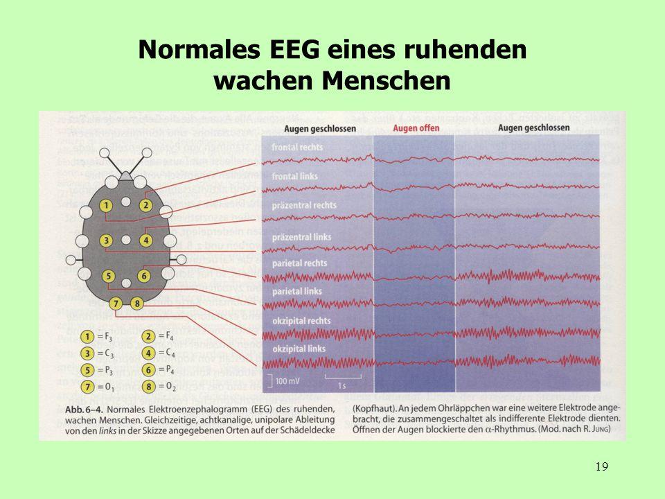 19 Normales EEG eines ruhenden wachen Menschen