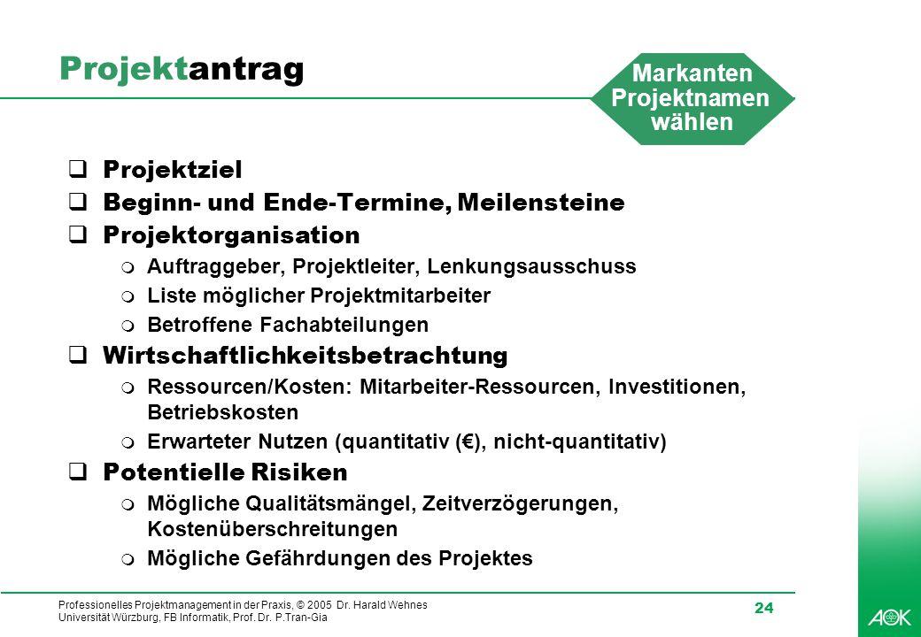 Professionelles Projektmanagement in der Praxis, © 2005 Dr. Harald Wehnes Universität Würzburg, FB Informatik, Prof. Dr. P.Tran-Gia 24 Projektantrag 