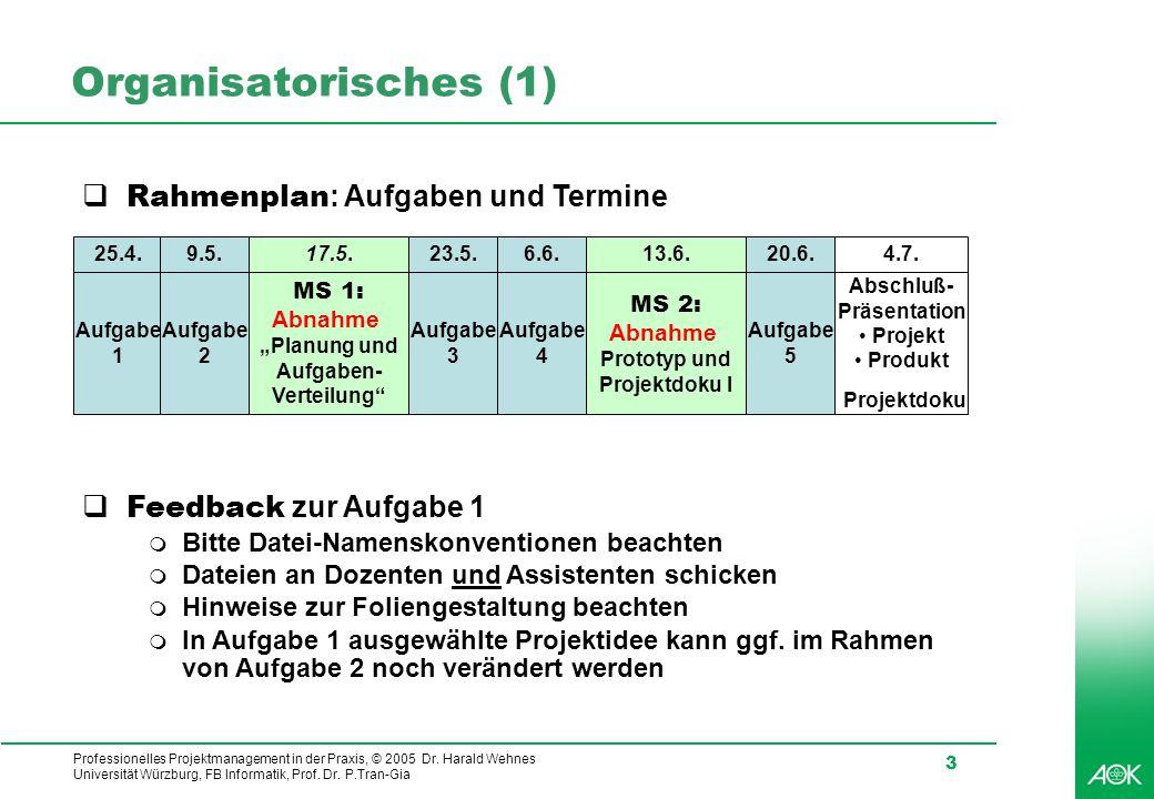 Professionelles Projektmanagement in der Praxis, © 2005 Dr. Harald Wehnes Universität Würzburg, FB Informatik, Prof. Dr. P.Tran-Gia 3 Organisatorische