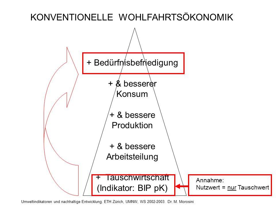 Umweltindikatoren und nachhaltige Entwicklung. ETH Zürich, UMNW, WS 2002-2003. Dr. M. Morosini + Bedürfnisbefriedigung + & besserer Konsum + & bessere