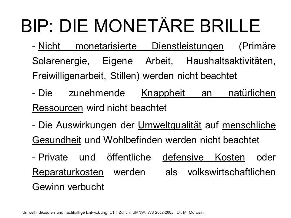 Umweltindikatoren und nachhaltige Entwicklung. ETH Zürich, UMNW, WS 2002-2003. Dr. M. Morosini BIP: DIE MONETÄRE BRILLE - Nicht monetarisierte Dienstl
