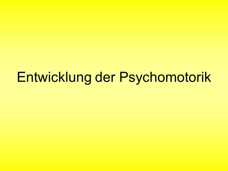 Entwicklung der Psychomotorik