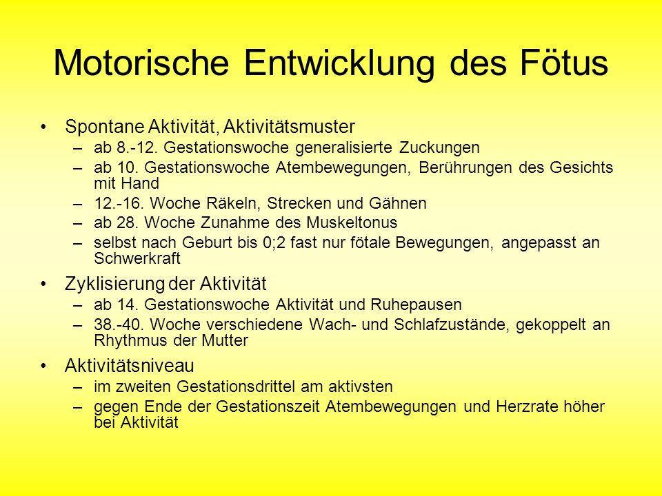 Motorische Entwicklung des Fötus Spontane Aktivität, Aktivitätsmuster –ab 8.-12.