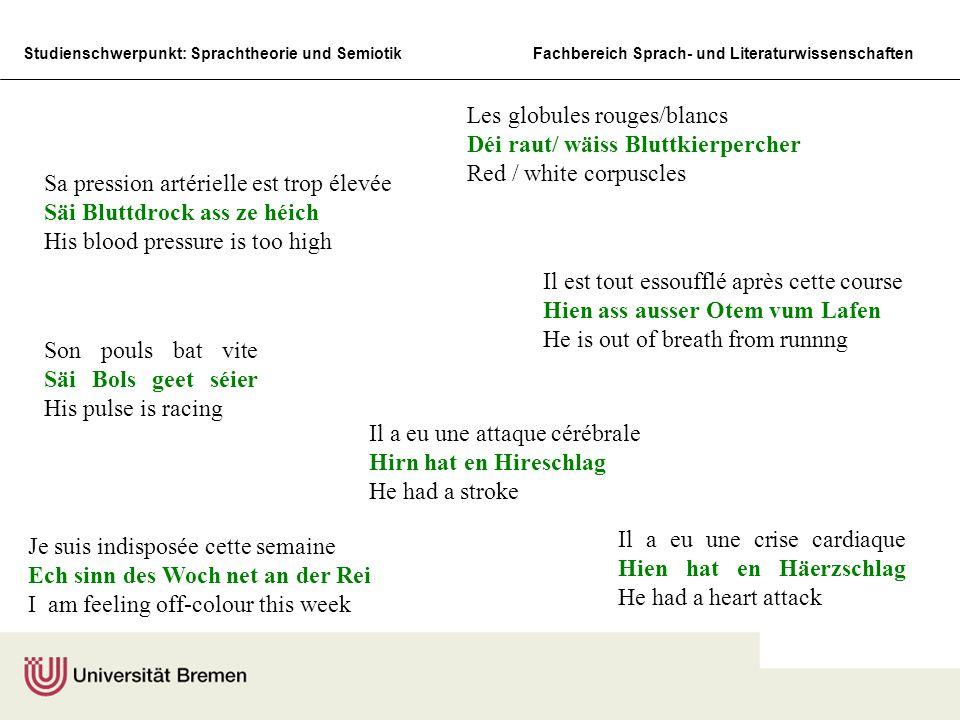 Studienschwerpunkt: Sprachtheorie und SemiotikFachbereich Sprach- und Literaturwissenschaften Son coeur bat très regulièrement Säin Häerz schléit sché