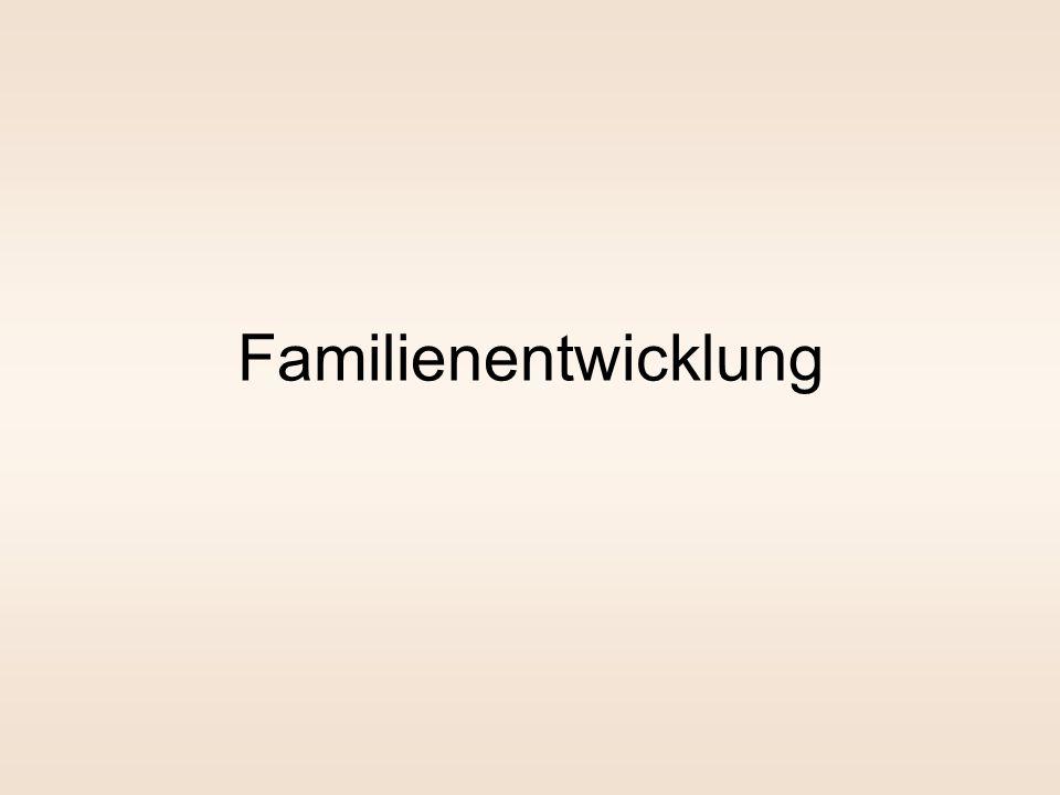 Grundlegende Annahmen der Familientheorien Menschen entwickeln sich in Transaktion mit ihrer Umwelt Menschen sind auf soziale Beziehungen angewiesen M