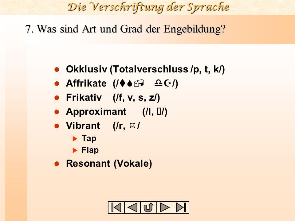 Die Verschriftung der Sprache Oberlippe Oberzähne Zahndamm harter Gaumen weicher Gaumen Stimmlippen (Glottis) Pharynx Uvula (Zäpfchen) Kehlkopf (Laryn