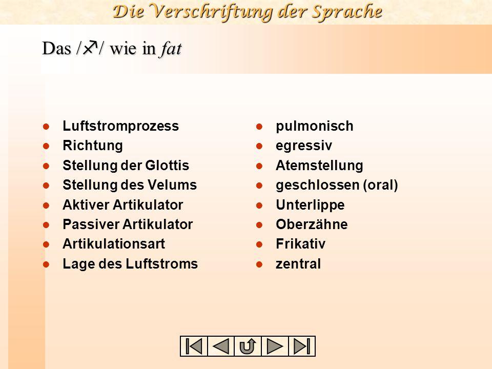 Die Verschriftung der Sprache 8. Wie ist die Lage des Luftstroms? zentral(/t, d, s, z/) lateral(/l, ,  /)