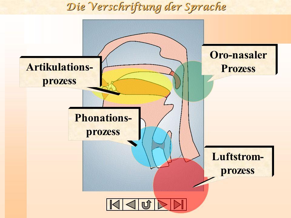Die Verschriftung der Sprache 8.Wie ist die Lage des Luftstroms.