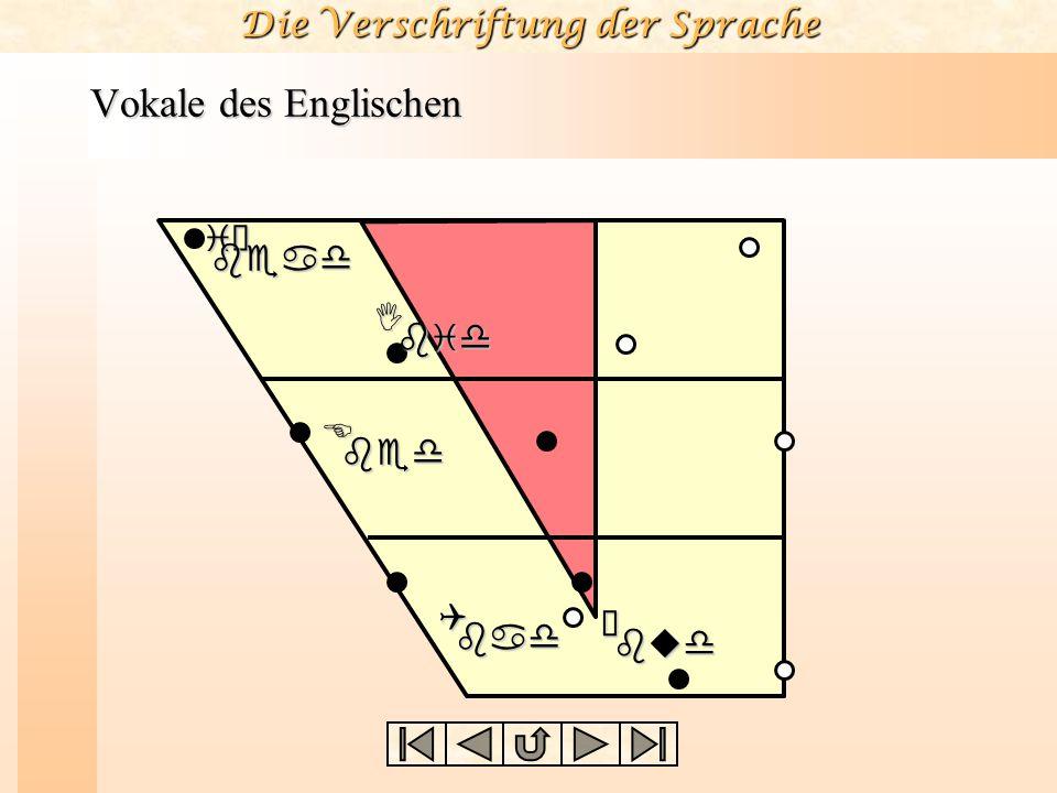 Die Verschriftung der Sprache Vokale des Englischen Der Englische Vokal /iù/ wie in bead ist etwas niedriger und etwas zentraler als KV /i/. Der Vokal