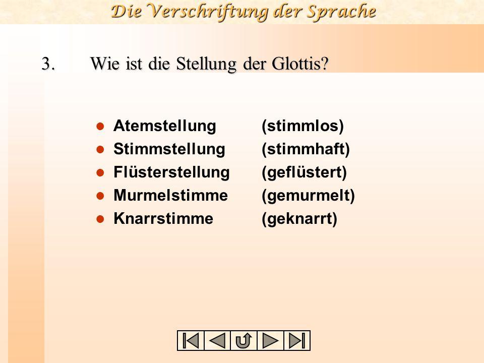 Die Verschriftung der Sprache Beispiel PhonationstypArtikulationsstelleArtikulationsart Aktiver Artikulator Passiver Artikulator Art & Grad der Enge Nasalität Lateralität Luftstrom /b//b/ /f//f/ /?//?/ / tS / / t / /N//N/ /Â//Â/ stimmhafter stimmloser (stimmloser) stimmlose stimmloser stimmhafter stimmloser dentaler glottaler labio- velarer alveolarer dorso- lamino- apiko-/ lamino- dentaler/ alveolarer Plosiv Frikativ Affrikate Ejektiv Nasal lateraler Frikativ labio-labialer lamino-palatale bilabialer palato-alveolare