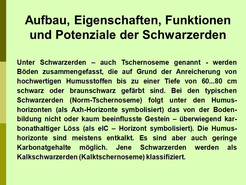 Unter Schwarzerden – auch Tschernoseme genannt - werden Böden zusammengefasst, die auf Grund der Anreicherung von hochwertigen Humusstoffen bis zu ein
