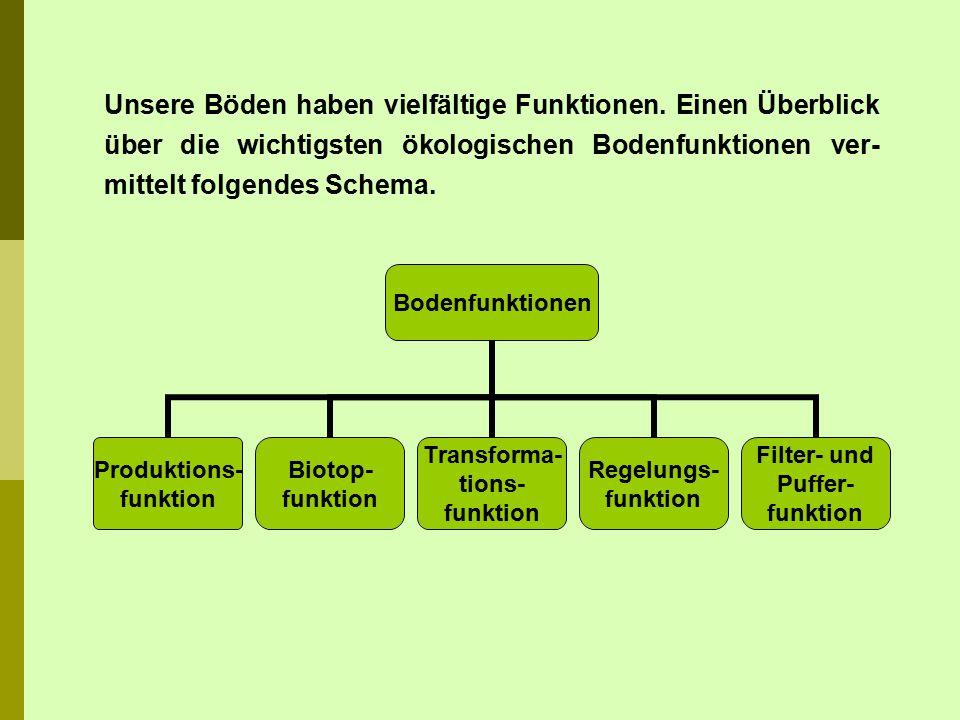 Bodenfunktionen Produktions- funktion Biotop- funktion Transforma- tions- funktion Regelungs- funktion Filter- und Puffer- funktion Unsere Böden haben