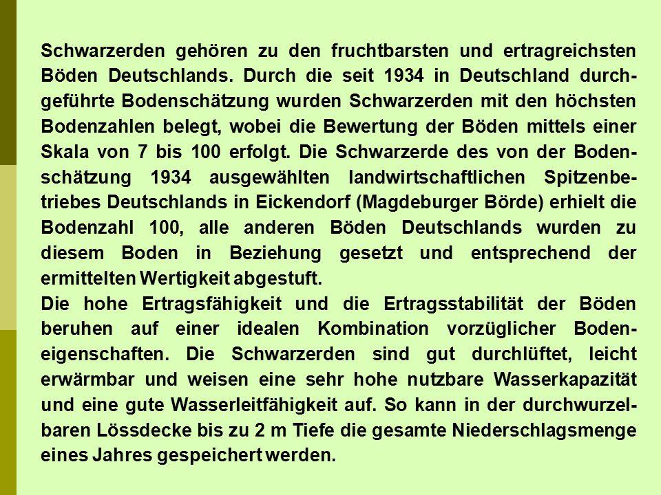 Schwarzerden gehören zu den fruchtbarsten und ertragreichsten Böden Deutschlands. Durch die seit 1934 in Deutschland durch- geführte Bodenschätzung wu