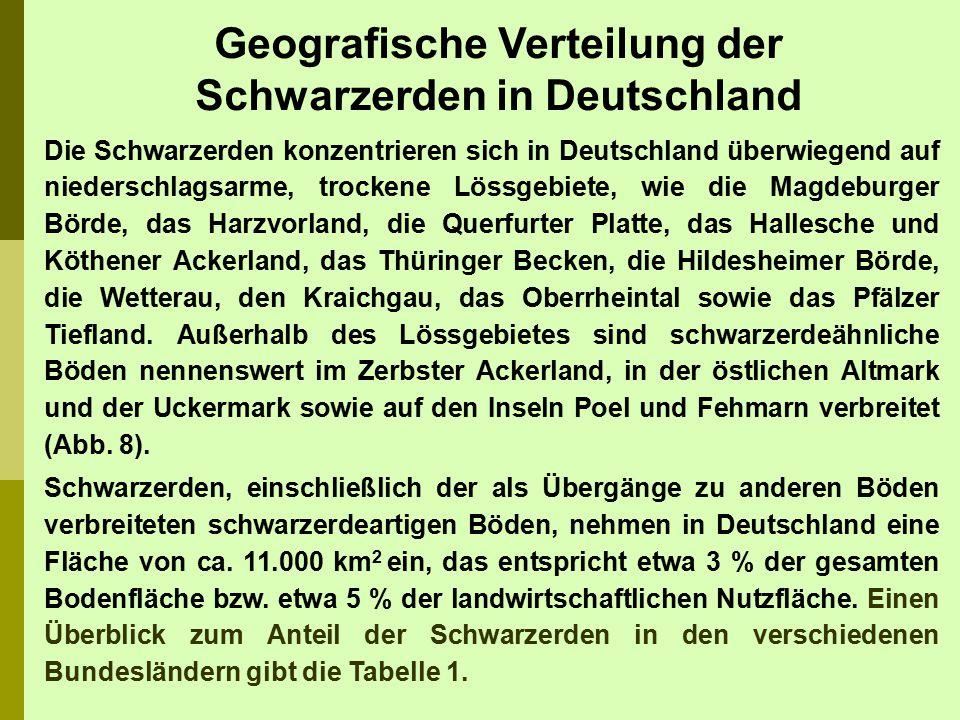 Die Schwarzerden konzentrieren sich in Deutschland überwiegend auf niederschlagsarme, trockene Lössgebiete, wie die Magdeburger Börde, das Harzvorland