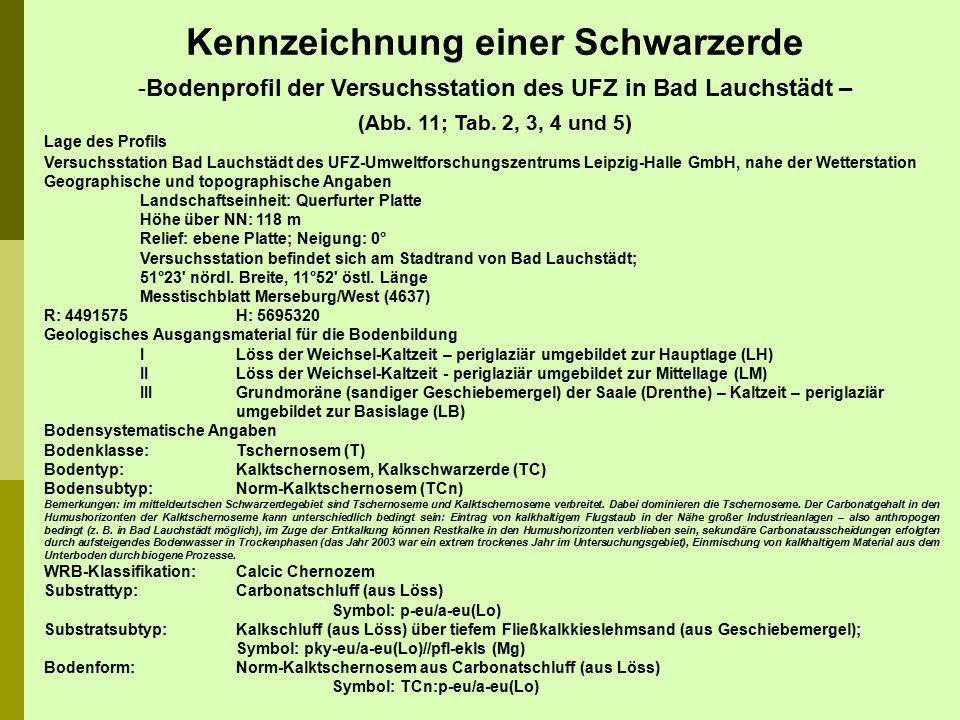 Lage des Profils Versuchsstation Bad Lauchstädt des UFZ-Umweltforschungszentrums Leipzig-Halle GmbH, nahe der Wetterstation Geographische und topograp