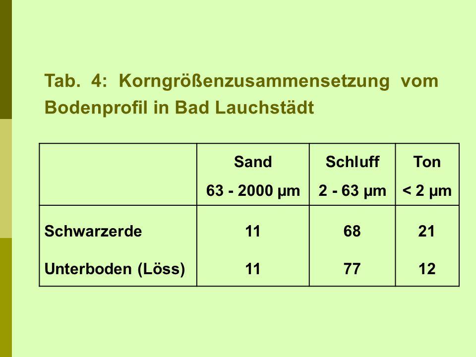 Tab. 4: Korngrößenzusammensetzung vom Bodenprofil in Bad Lauchstädt Sand 63 - 2000 µm Schluff 2 - 63 µm Ton < 2 µm Schwarzerde Unterboden (Löss) 11 68